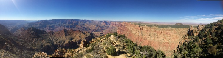 panorama-of-grand-canyon