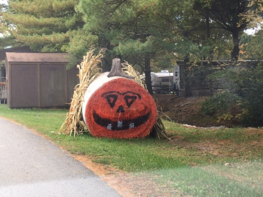 Pumpkin painted on hayroll.JPG