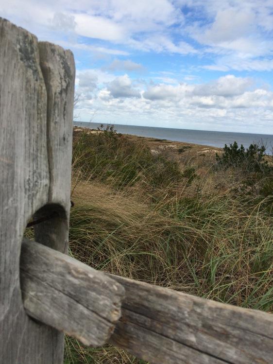 the-atlantic-ocean-from-fort-miles-overlook